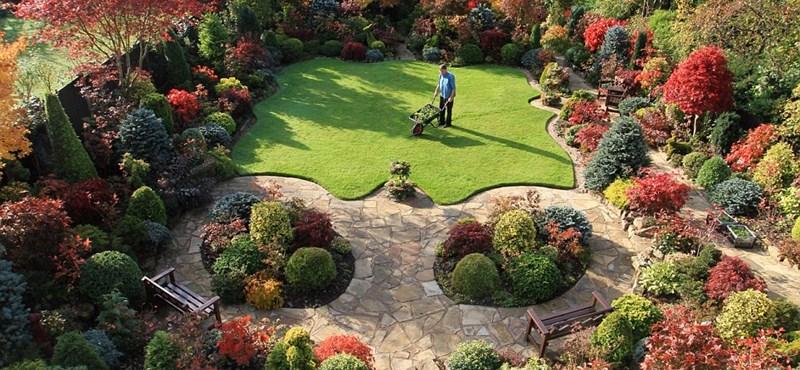 Bámulatos lett a Szerelem kertje