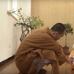 A buddhisták már megint kitaláltak valamit: videón a robotszerzetes