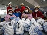 Koronavírus: betiltották a vadhús értékesítését Kínában