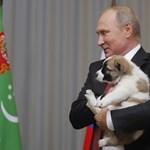 Megvan, hol és mikor találkozik Trump és Putyin
