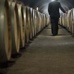 Hirtelen megoldódott a Tokaj Kereskedőház aszúbaja