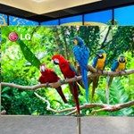 Hang- és gesztusvezérlés, Angry Birds és internet - ilyen a jövő tévéje