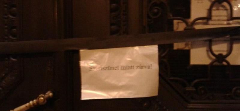 """""""Szénszünetet"""" tartottak az egyetemek az Educatio-kiállításon"""