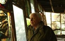David Attenborough a civilizáció szétesésére figyelmeztet