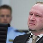 Breivik le akarta fejezni a volt norvég kormányfőt