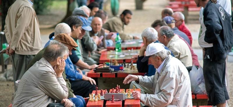 Már havi 60 ezer forintért is csábítják a munkába a nyugdíjasokat