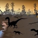 Ritka dinoszaurusz-leletre bukkantak a kínai tudósok