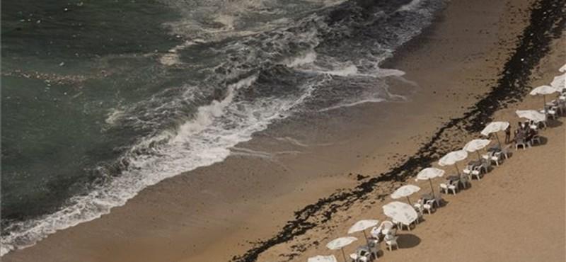 Tragikus mentés egy strandon: 11 ember megfulladt Egyiptomban