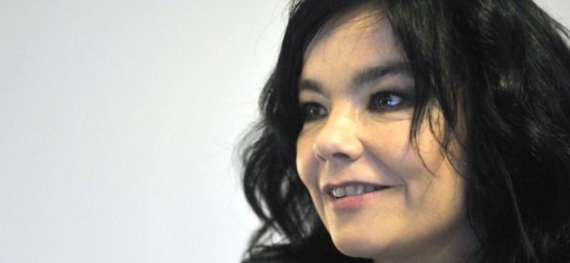Készen áll, hogy megtekintse Björk új lemezének borítóját?