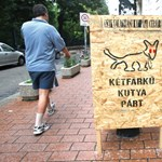Tanszergyűjtő akciót indít a Kétfarkú Kutya Párt