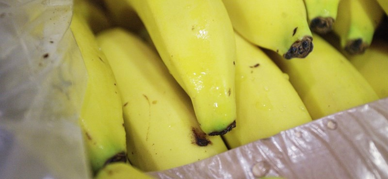 Megmondta a Nébih, melyik a legjobb banán