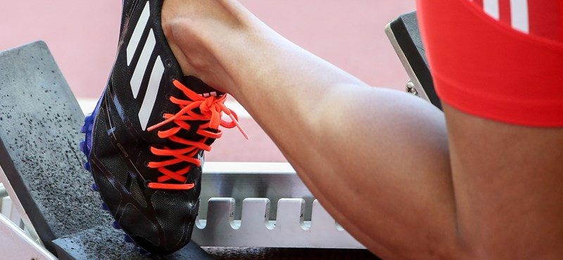 Csatát nyert a kamu sportcipők ellen az Adidas