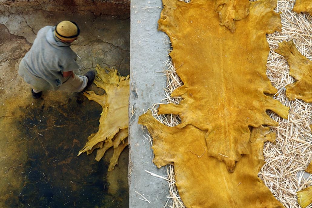 Bőrcserzés és festés Fez bőrmanufaktúráiban.