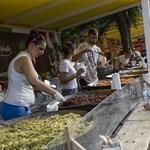 Így juss be ingyen a Sziget Fesztiválra! Videó