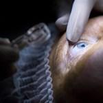 Nem láttak pár nappal a műtét után egy budaörsi centrum betegei