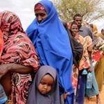 Élhetővé tenné Szomáliát az ENSZ