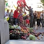 Tonnaszám pusztítják a zöldséget Macedóniában