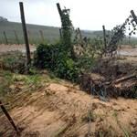 Fotók: sár zúdult több falura Tolnában