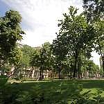 Ijesztő Szent István szobor készül Budapesten