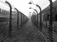 Pénzbírságra ítéltek egy férfit, aki levizelte az auschwitzi áldozatok emlékművét