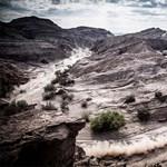 Íme, az idei Dakar-rali legszebb fotója