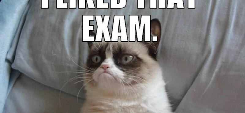 Itt a véghajrá: tippek érettségizőknek a vizsga előtti utolsó órákra