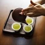 Meglepően jó kombináció a zöld tea és egy antibiotikum