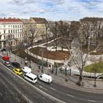 Egy 200 éves fát is kivágtak a Nemzeti Múzeum kertjének felújításakor