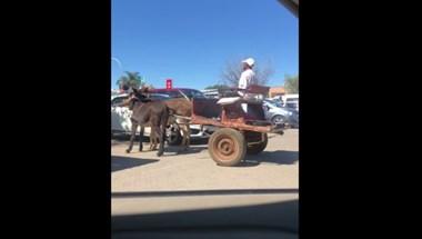 Videó: Ennyi a profi parkolás egy szamárfogattal