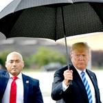 Trump ellen döntött egy kaliforniai bíróság