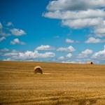 Mit ad isten, a termőföld a legjobb befektetés