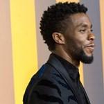 Jön az új Fekete Párduc, de Chadwick Boseman szerepe halhatatlan marad