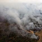 """""""A totális katasztrófa forgatókönyvével nézünk szembe Amazóniában"""""""