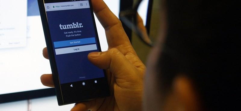 Pornósok kezébe kerülhet a Tumblr