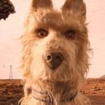 Szívmelengető mókának ígérkezik Wes Anderson animációs filmje – feliratos előzetes