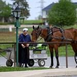 Sört és hangrendszert rejtegettek a lovaskocsijukban az amisok – elszaladtak a rendőrök elől
