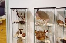 Virtuálisan bejárhatjuk a Magyar Földrajzi Múzeumot