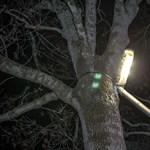 57 százalékos megtakarítást várt Vác az Elios-lámpáktól, de egy önkormányzati képviselő szerint hiába