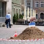 Elefántürülék-halmok lepték el Poznant, nem véletlenül – fotók