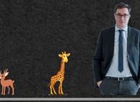 Tállai András zsiráffal hasonlította össze Karácsony Gergelyt