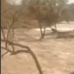 Mit tud egy öreg terepjáró egy áradó folyó medrében?