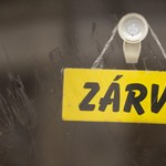 Zsiday Viktor: Érvényét veszti a csótányelmélet, ősztől jöhet a gazdasági fellendülés