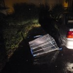 Gurulós bevásárlókocsit hajítottak ki a harmadikról Szegeden – fotó