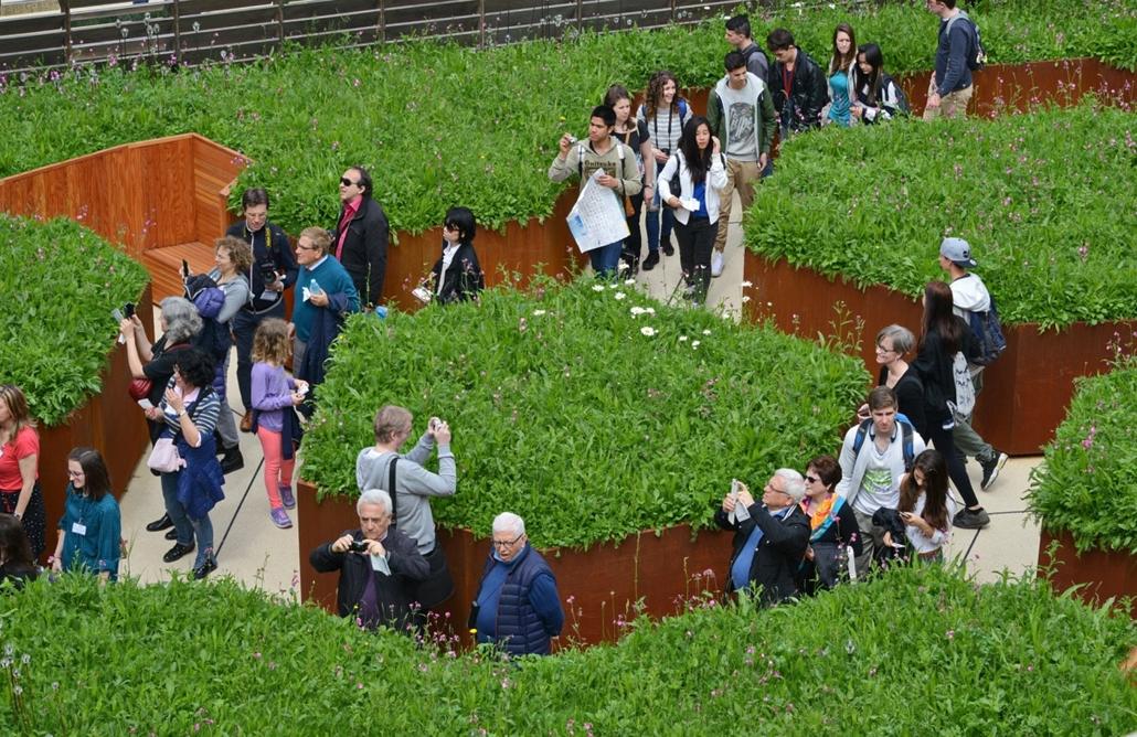 kka.15.05.0y. - Milánó, Olaszország: Világkiállítás - A brit pavilon kertjében a méhek kipusztulásának veszélyére figyelmeztet a labirintus-virágerdő.