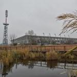 Kiirtották a veszélyes baktériumot, hazatérhet a Fehérvár