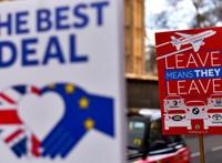 Egy francia miniszter Brexitnek nevezte el a macskáját