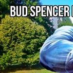 Bud Spencer emlékpark nyílik Kaszásdűlőn?