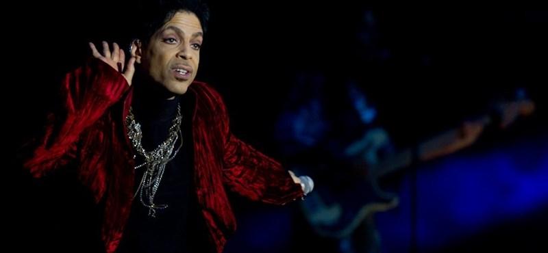 Hatvanmillió forintért ütötték le Prince gitárját