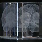 5 érdekes tény, amit talán még nem tudott az emberi memóriáról