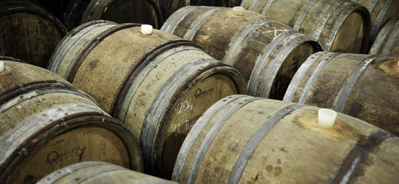 Mátrai borász lett az év bortermelője